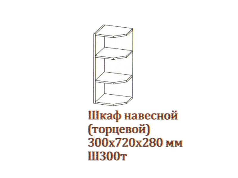 Шкаф навесной 300-720 торцевой Ш300т-720 300х720х280 Серый