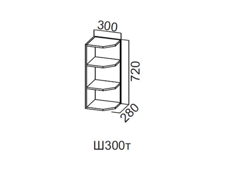 Шкаф навесной торцевой 300 Ш300т 720х300х296мм