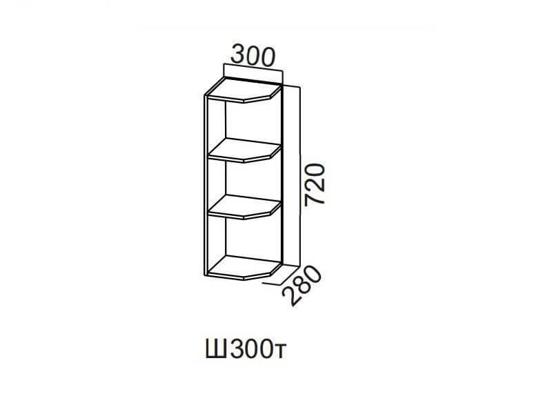Шкаф навесной торцевой 300 Ш300т-720 720х300х296мм