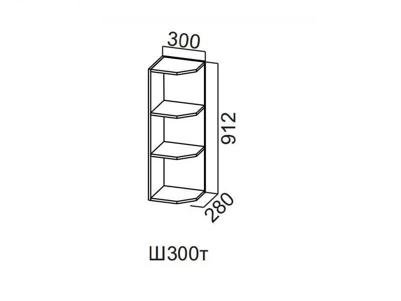 Шкаф навесной торцевой 300 Ш300т-912 912х300х296мм