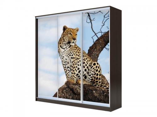 Шкаф-купе Хит 3-х дверный Леопард