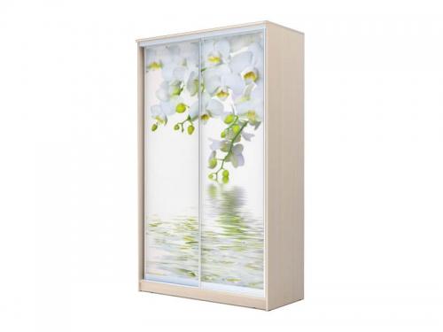 Шкаф-купе Хит 2-х дверный Орхидея